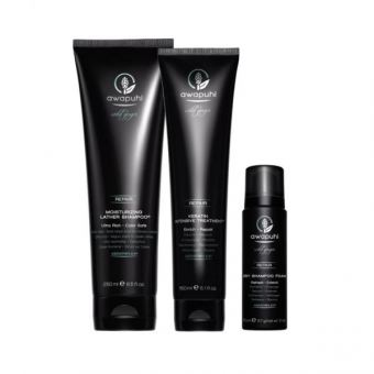 Paul Mitchell - Awapuhi Wild Ginger Set Cleaning and Care